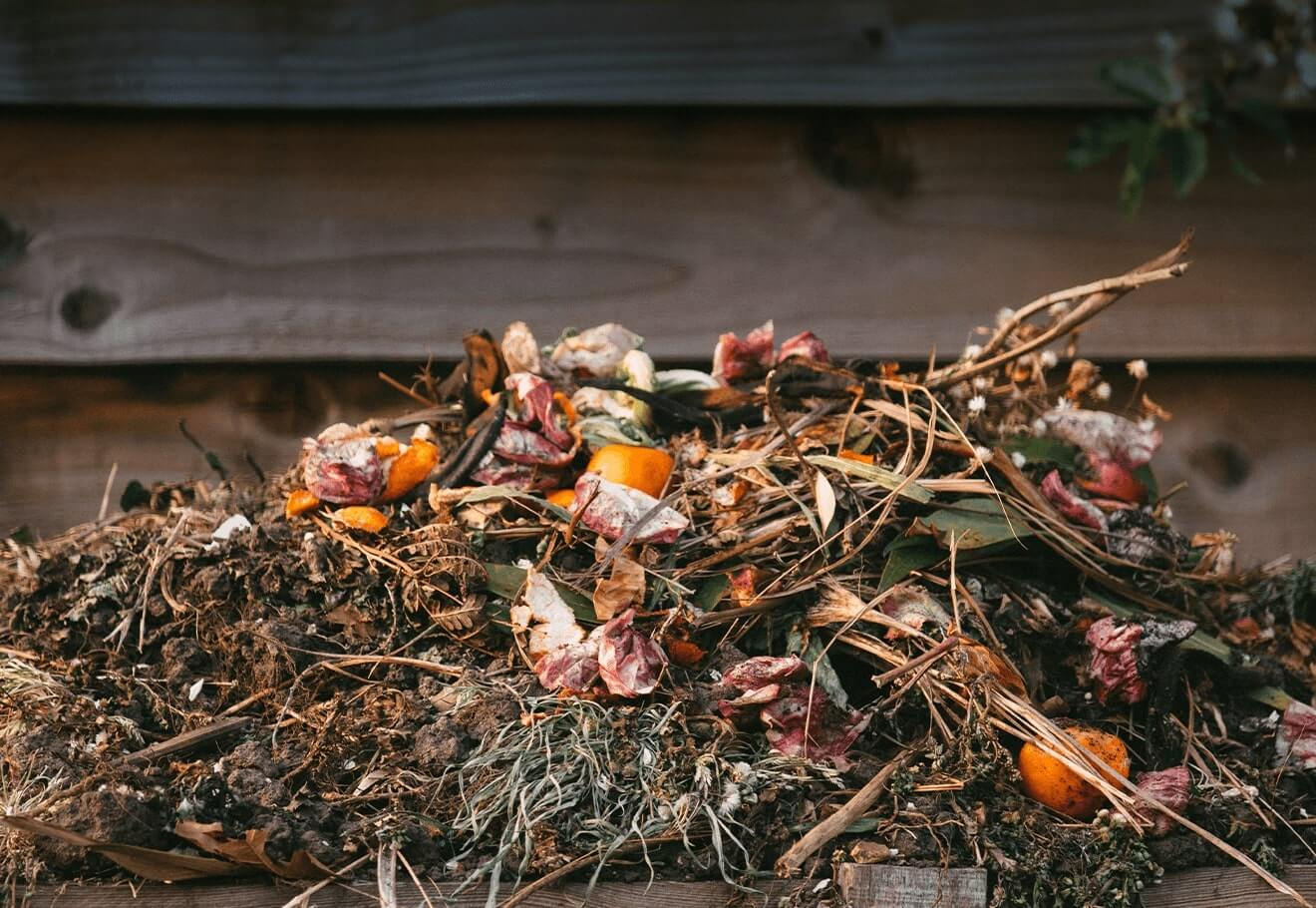 Composting pile in backyard