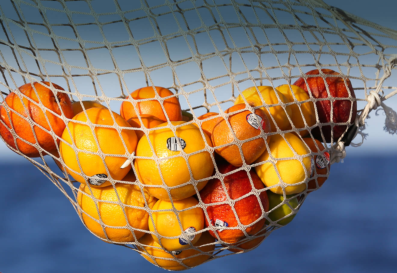 Fresh fruits hanging from a boat