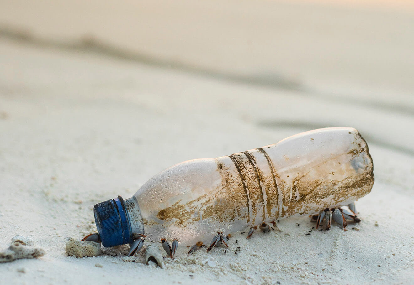 Plastic water bottle washed up on a beach