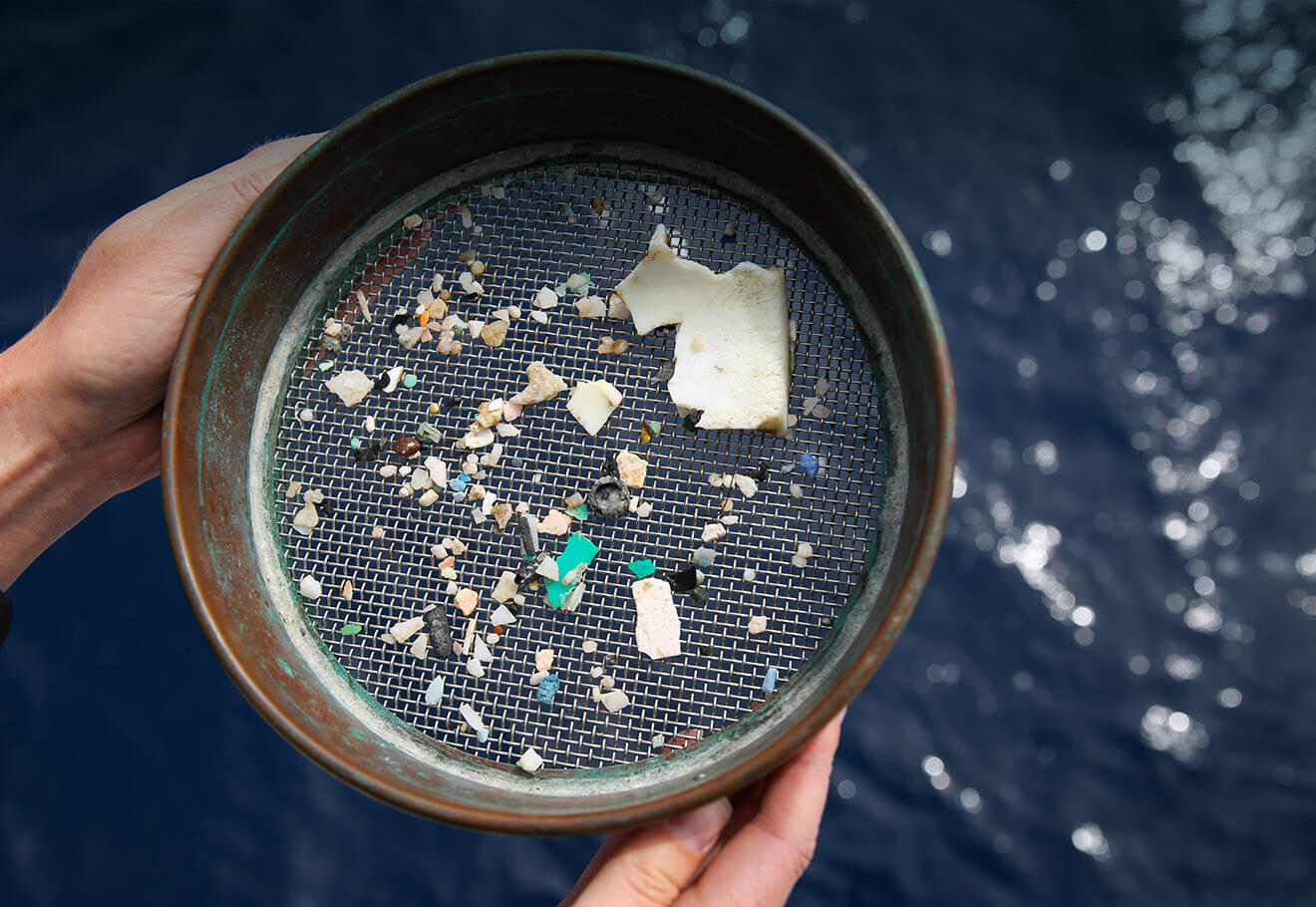 Sample of microplastics in the ocean onboard eXXpedition
